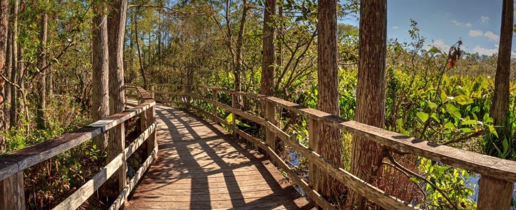 The 6 Different Habitats at Corkscrew Swamp Sanctuary